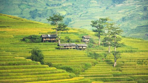 Bali - Férias Tropicais