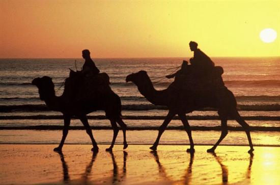 circuitos de ferias marrocos